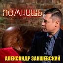 Александр Закшевский - Помнишь