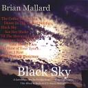 Brian Mallard - Summer Night Song