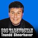 Sos Tadevosyan - Nerir