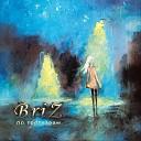 BriZ - Time to say goodbye