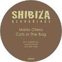 Mario Otero - Cats in the Bag Level Groove Remix