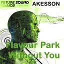 Akesson - Flavour Park Original Mix