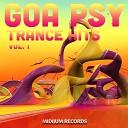 Goa Psy Trance Hits Vol.1 (Best Of Psychedelic Goatrance, Progre...