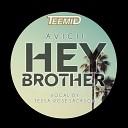TEEMID - Avicii - Hey Brother (TEEMID x Tessa Rose Jackson Cover)
