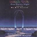 JOSEPH WELZ - Saving Grace