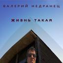 Валерий Недранец - Жизнь такая