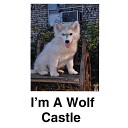 Castle - I m a Wolf