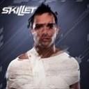 Skillet - Hero (Skrillex  Remix)