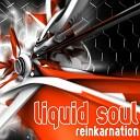 Liquid Soul - Reinkarnation Dj Mix