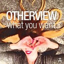 Новый Хит Na100Fm - OtherView – What You Want