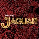 Jaguar - India