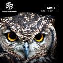 Javiis - Reality Monococ Remix
