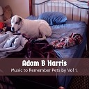 Adam B Harris - Running Free