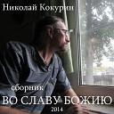 Николай Кокурин - Да будет же свет
