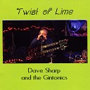 Dave Sharp The Gintonics - Never Say If Only