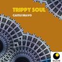 Trippy Soul - Zeppelin