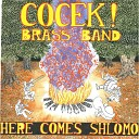 Cocek Brass Band - Who Cares