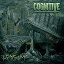 Cognitive - Falling Skies