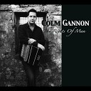 Colm Gannon feat Alec Finn John Blake - One of Johnny s Own McGreevey s Mary O neill s Fancy Reels feat Alec Finn John Blake