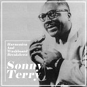 Sonny Terry and Brownie McGhee - Lonesome Blues