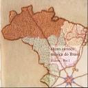 Toninho Carrasqueira - Zeppelin