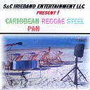 Courtney Henry - Reggae in the Sunshine Steel Pan Version
