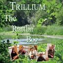 Trillium - Puttin On the Ritz