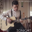 Peter Gergely - Can You Feel The Love Tonight