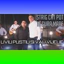 Liviu Pustiu - Strig cat pot in gura mare