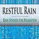 John Story - Gentle Raindrops