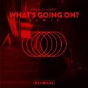 Don Alex Albert - Whats Going On Remix