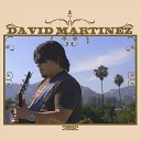 David Martinez - Can t Find You