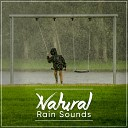 Sounds of Nature White Noise for Mindfulness Meditation and Relaxation Relaxing Music Therapy Rain Sound Studio - Thunder in the Forest