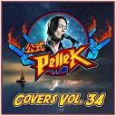 PelleK - Pewdiepie s YouTube Rewind Metal Version