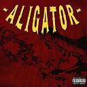 Mefiu - Aligator