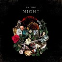 PUD - In the Night