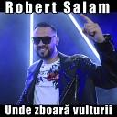 Robert Salam - Hai vino langa mine