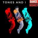 Tones AND I - Dance Monkey ICEGOOD Remix