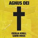 Cecilia Krull Gavin Moss - Agnus Dei From Vis a Vis