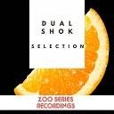 Dual Shok - I Give You Love