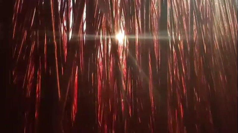 капля света красный лес