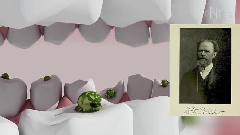 ФАКТЫ О КАРИЕСЕ которых вы не знали Естественное лечение зубов
