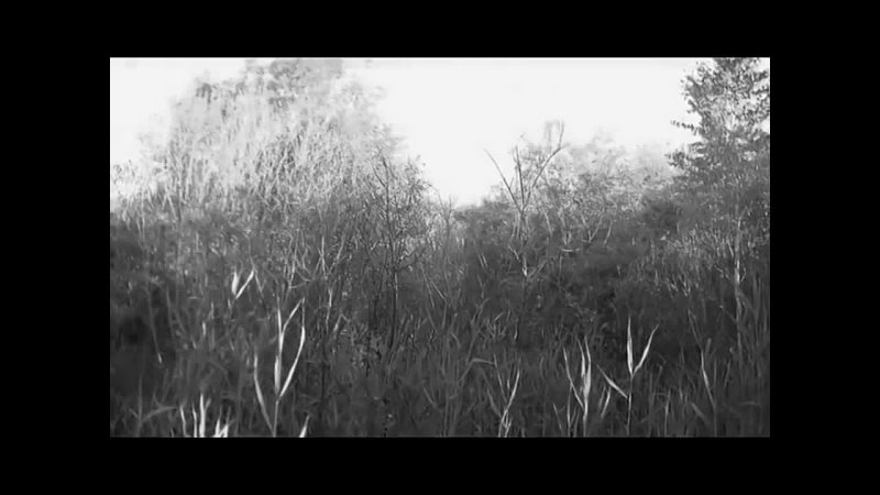 Видео от Ск Двеялочнаи Ск Двеялочной