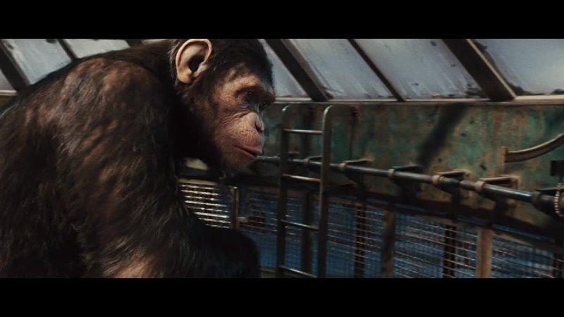 планета обезьян фильм 1