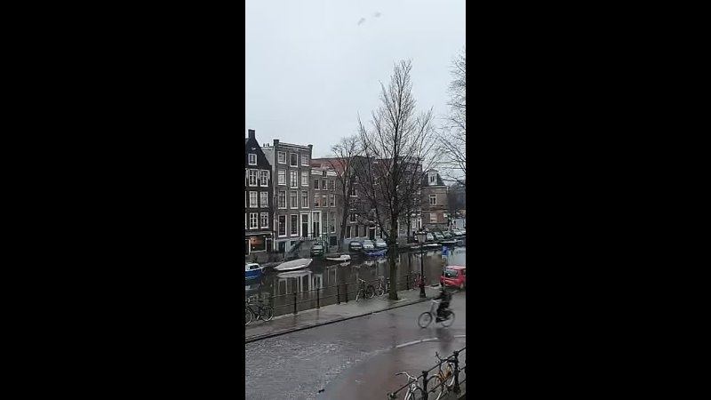 Жители Амстердама и гололёд.