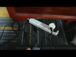 Зарядное устройство для электрического скейтборда Xiaomi Mijia