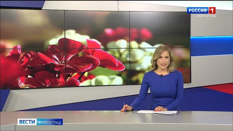 Видео от Ларисы Холтобиной