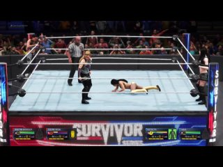 WWE-5on5-Woman-Surviror Series-Smackdown(Natalya,Paige) vs Raw(,)-2on2 tag team match!