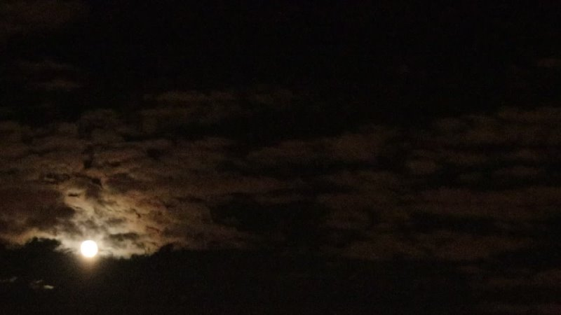 The moon rises above the sky and hides in the clouds. Night time lapse