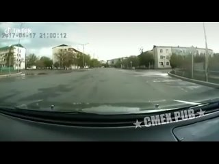 MEN`S VIDEO (1236)